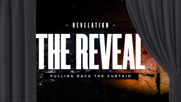 The Reveal // Thursday Nights